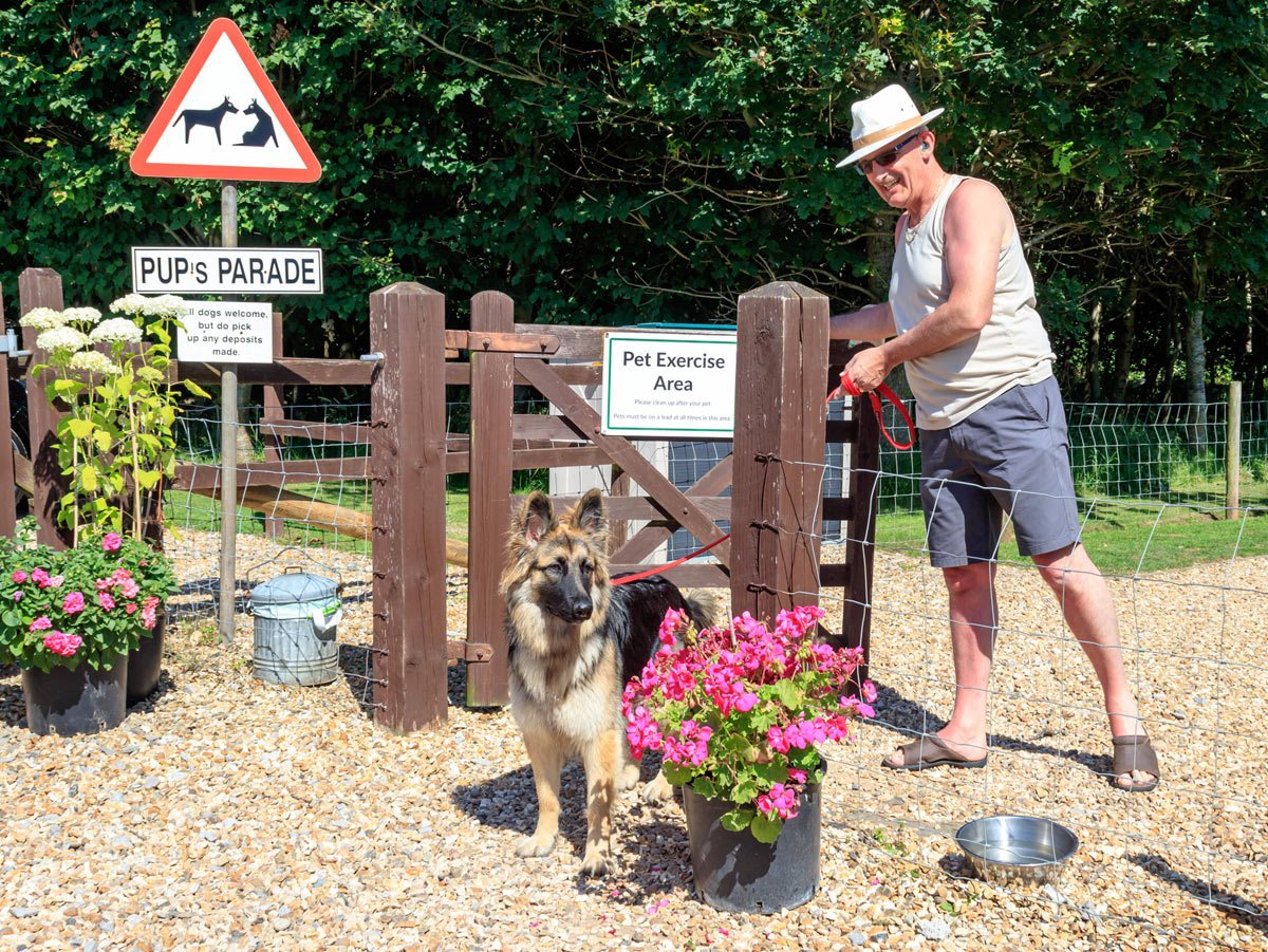 dog friendly holidays at bath chew valley