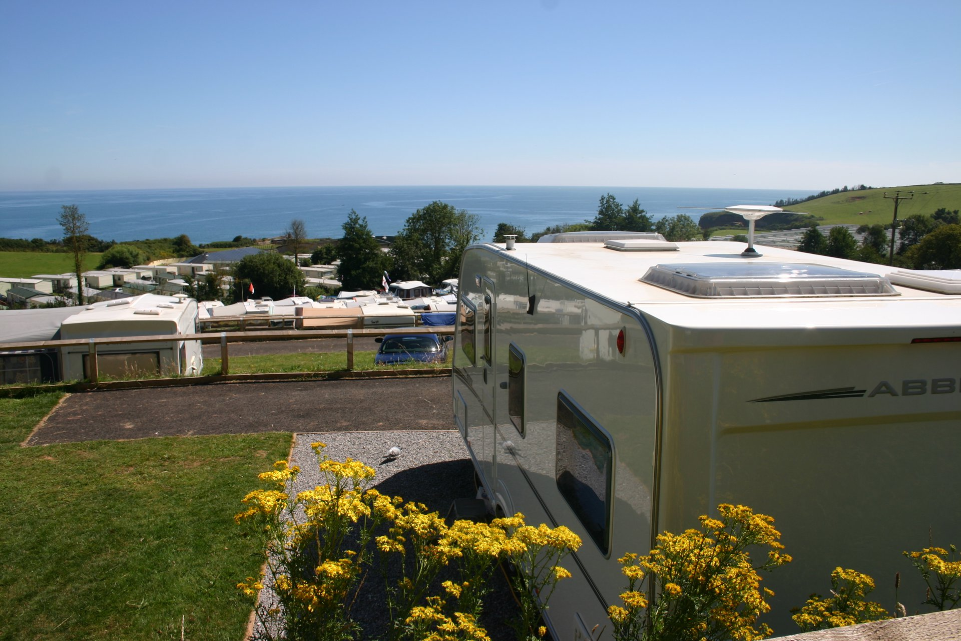 seaview touring pitches at ladram bay holiday park in devon